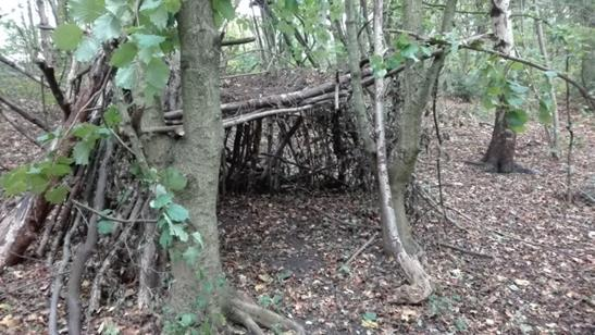 Den built by children